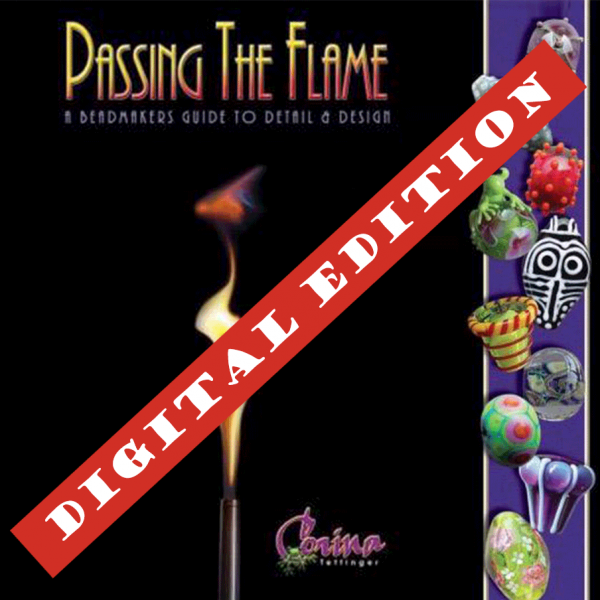 Passing The Flame eBook